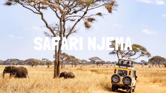 7 days Complete safari